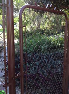 I just spray painted my chain link fence and gate!! Looks SO much better!!! Any spray paint meant for metal is fine, darker colors look the best. I used Leather Brown Gloss from Big Lots for $3 each. It would of course be cheaper to brush paint on but it would take much longer. With spray paint it goes on quick and smoothly but there is a lot of overspray so be prepared to get quite a few cans of spray paint!