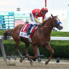 Justify❤ Wins Triple Crown