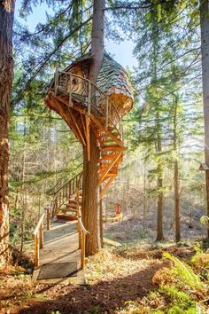 A narrow circular staircase hugs the trunk supporting this cozy Washington-based tree house dubbed the Beehive. Photo 2 of 11 in How Tree House Master Pete Nelson Built an Empire in the Woods. Browse inspirational photos of modern homes. Beautiful Tree Houses, Cool Tree Houses, Tree House Masters, Tree House Plans, Diy Tree House, Garden Tree House, Modern Tree House, Winding Stair, Treehouse Hotel