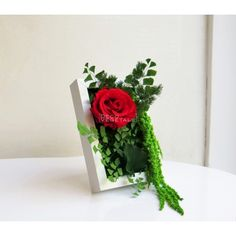 Tin Can Crafts, Diy And Crafts, Diy Flowers, Paper Flowers, Art Vert, Moss Wall Art, Fleurs Diy, Green Art, Flower Frame