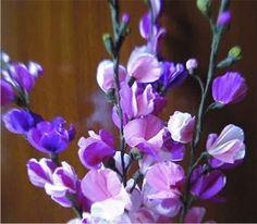 Paper flower - Wallflowers