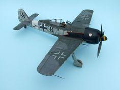 Focke-Wulf Fw 190 Würger 1/48 Scale Model