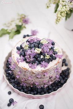 Cassis Torte_7835 Fancy Cakes, Cute Cakes, Eatable Flowers, Cake Photography, Flower Food, Cake Tasting, Specialty Cakes, Cute Food, Creative Cakes