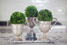 boxwood-and-vintage-trophies