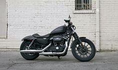 harley 883 iron - maybe I do need a contemporary bike...