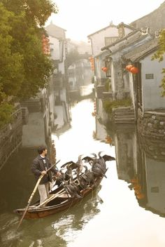 Rode a boat into this village, it is so much better to get into areas where you can really see how the Chinese live.