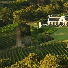 There's more than one way to experience the world-class wine farms of Franschhoek, Stellenbosch, Constantia and Hermanus. Cape Dutch, Famous Wines, Dutch House, Day Tours, Cape Town, South Africa, National Parks, Wineries, Southern