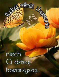 Good Morning, Mitosis, Pictures, Buen Dia, Bonjour, Good Morning Wishes