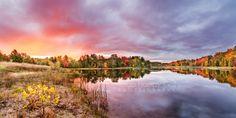 Color Explosion at Sabin Pond