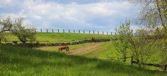 Silver Ranch in Jaffrey, NH
