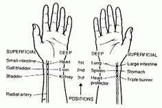 Acupuncture & Alternative Treatment: Pulse Diagnosis in Chinese Medicine