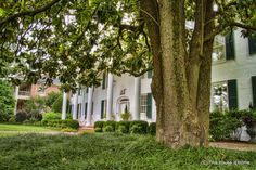 The Alpha Psi chapter of Delta Gamma at Ole Miss in Oxford, MS.