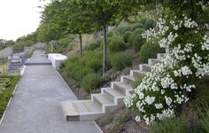 New-stairs-and-botanical-roses « Landscape Architecture Works | Landezine