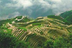 Ping'an, China