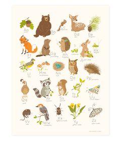 WOODLAND Forest Alphabet abc - nursery wall art for kids (36.00 USD) by SeaUrchinStudio