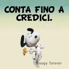 #cicredo