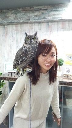 【画像あり】吉木りさ(29)、終わる