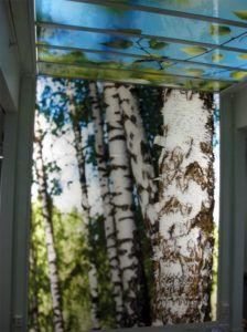 Naturmotiv i modern forskningsmiljö - Printglas Modern, Decor, Home Decor, Curtains