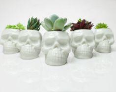 Skull Planter, Succulent & cacti vase, Modern Plant Pot, Minimalist Planter, Indoor Plant Pot, Cactus Planter Gifts, Happy Planters $13.99 Skull lovers #cactus #succulent