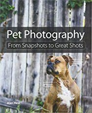 Take better pictures of your furry friends with these simple pet photography tips.