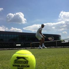 Nole! awesome pic with tennis ball