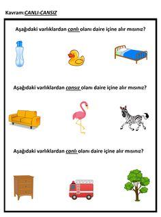 152 En Iyi Kavramlar Görüntüsü Preschool Kindergarten Ve Activities