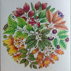 Podzimní listy ze #secretgarden #johannabasford #jardimsecreto