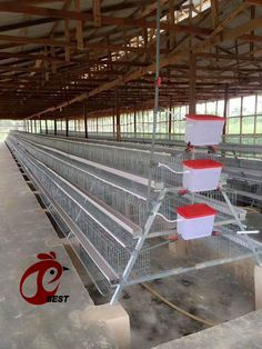 3 Tiers of 120 birds layer cage Application 1) Semi automatic cage