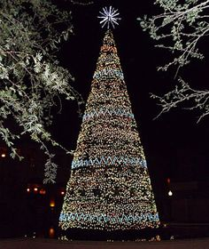 Beautiful Christmas Lights Around the World: Scottsdale, AZ
