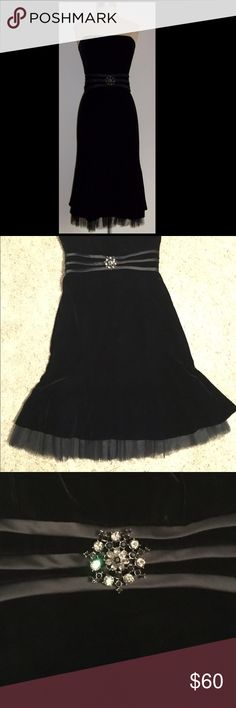 Talbots Velour Strapless Size 12 NWT This is an adorable Talbots NWT size 12. It has a broach detail at the waist and tulle fringed edge below the tea length skirt. Talbots Dresses Strapless