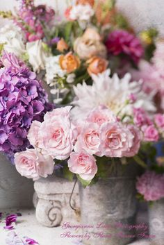 Your Tuesday Bouquet: Flower Market, French Country, Rose, Hydrangeas -