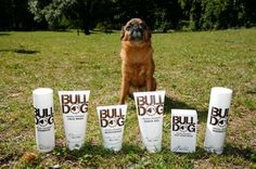 """Bulldog makes a whole line of products just for me. They don't use ingredients derived from animals because they consider that """"fairly gross"""". #crueltyfree"""