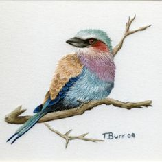 Lilac-breasted Roller embroidery by Trish Burr Embroidery Designs, Paper Embroidery, Silk Ribbon Embroidery, Crewel Embroidery, Cross Stitch Embroidery, Embroidery Patterns, Embroidery Online, Thread Painting, Thread Art