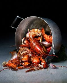 53 Ideas Seafood Photography Lobster For 2019 53 Ideas Seafood Photography Lobster For 2019 Photography Seafood Food Design, Dark Food Photography, Photography Photos, Gula, Fish And Seafood, Food Presentation, Food Pictures, Seafood Recipes, Food Styling