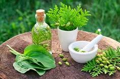 [UDEMY OFF]Herbalism: Natural Medicine with Kitchen Herbs-Use common kitchen herbs for health, nutrition, and natural medicine Teeth Health, Healthy Teeth, Dental Health, Oral Health, Health Facts, Stay Healthy, Dental Care, Herbal Remedies, Health Remedies