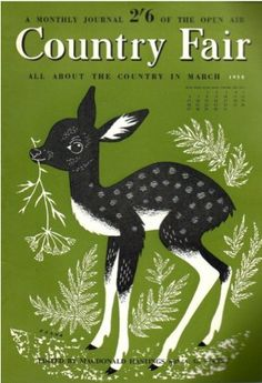 country fair magazine cover - fawn {delicious industries}