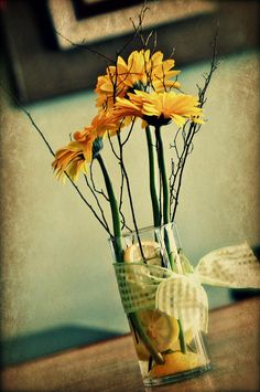 Coffee Shop Flowers by Stephanie Fenton