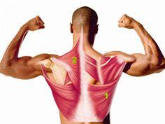 Trening siłowy: ćwiczenia na plecy - cz. 1 - Men's Health - magazyn dla mężczyzn