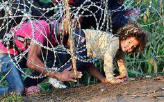 Hungary's Rightward Shift Fuels Refugee Policy | Al Jazeera America