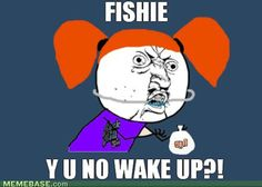 I know I shouldn't laugh since I love my two fish so much, but this is funny as hell!!