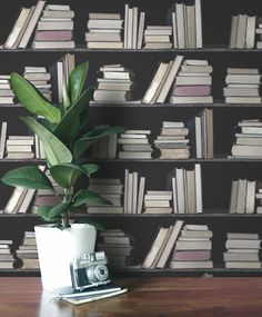 wye bookshelf wallpaper
