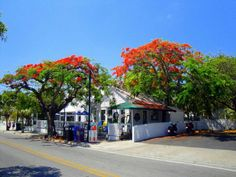 Whitehead Street, Key West - Almost the only thing that looks like I remember it from when I walked to school on Whitehead St back in the 1950's!
