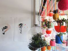 Miluccia ◆: The hanging garden