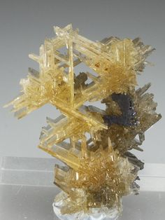CERUSSITE (reticulated crystal habit) Minerals from Tsumeb Mine, Tsumeb, Otjikoto Region, Namibia, Africa at Crystal Classics Cool Rocks, Beautiful Rocks, Minerals And Gemstones, Rocks And Minerals, Mineral Stone, Stones And Crystals, Gem Stones, Rocks And Gems, Gemstone Colors
