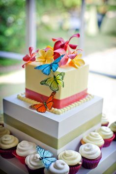 butterfly cake... the butterflies are amazing and so are the corners on that buttercream! Wow.