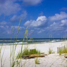 O verão chegou oficialmente no hemisfério norte e isso significa que muita gente pode planejar passar as férias de julho em praias nos EUA. Porém, se engana quem acha que....
