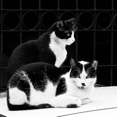 Black and White in black and white.