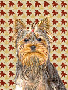 Fall Leaves Yorkie / Yorkshire Terrier Flag Garden Size KJ1205GF