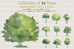 Collection of 44 Watercolor Trees by Anna Ivanir on @creativemarket