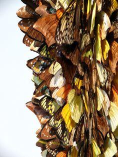 HEIMIR BJÖRGÚLFSSON, ALLURE GONE BUFFALO 2007: taxidermy, butterflies, other stuff.